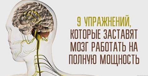Как сделать чтобы мозг работал 314